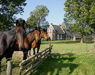 Guest house 262601 • Bed and Breakfast Het Friese platteland • Logement Doosje